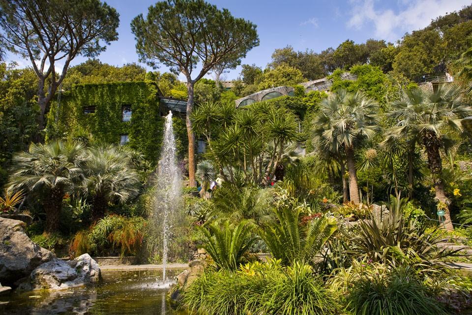 Hotel per bambini a Ischia: Family Hotel & Spa Le Canne, giardini