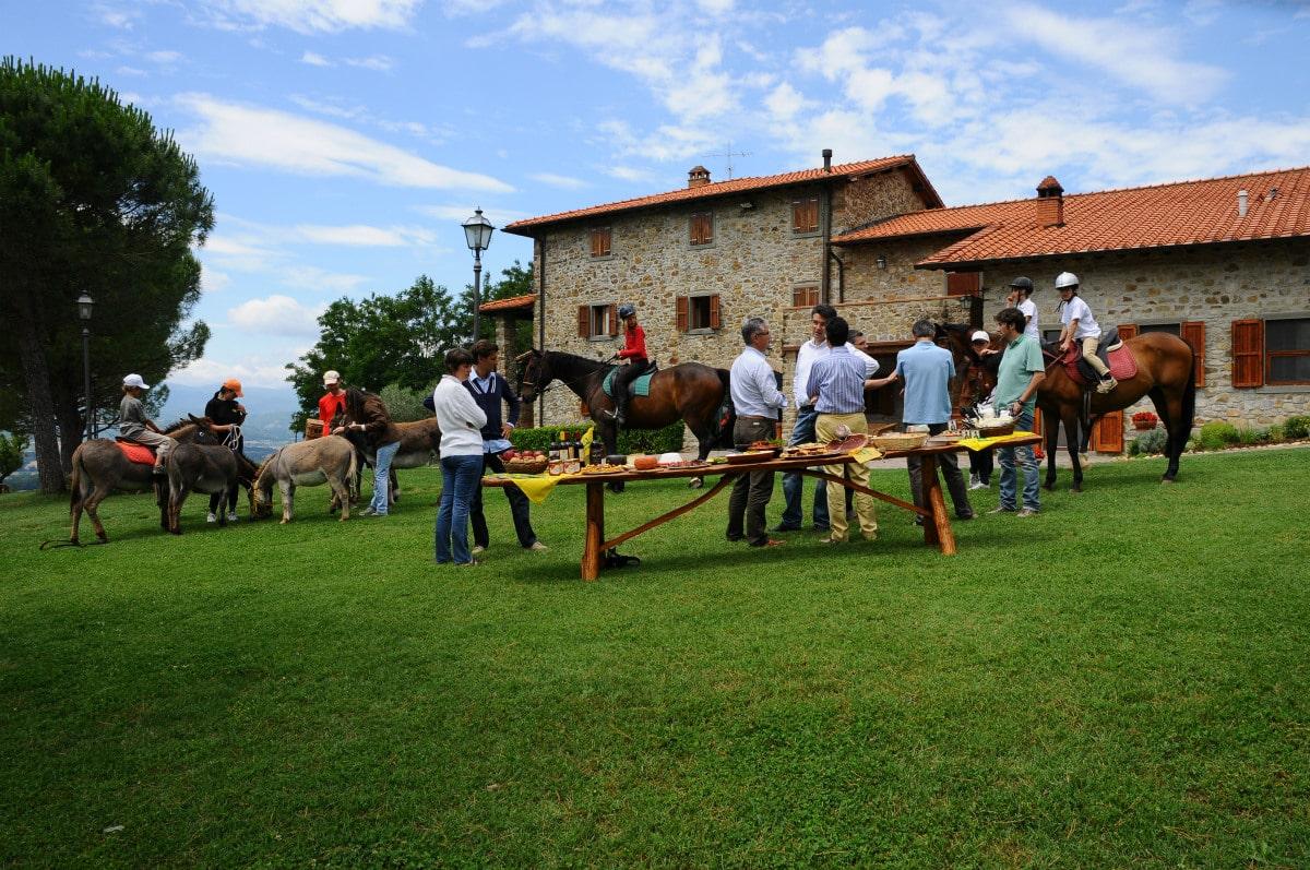 Agriturismo per bambini arezzo la collina delle stelle for Piani del centro di intrattenimento della fattoria