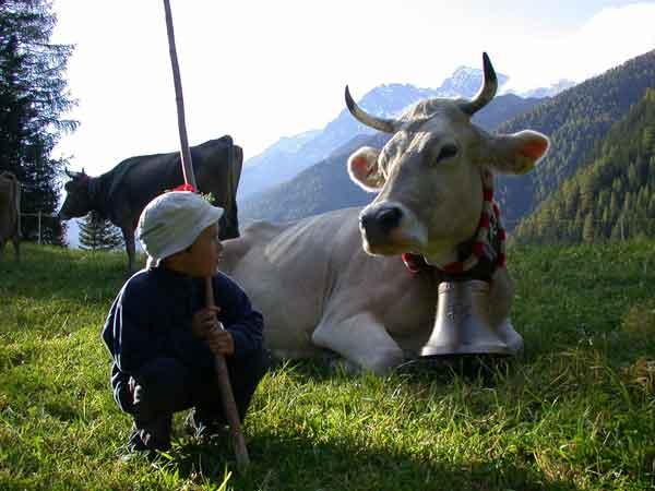 Hotel a Folgaria per bambini: Hotel al Sole, fattoria