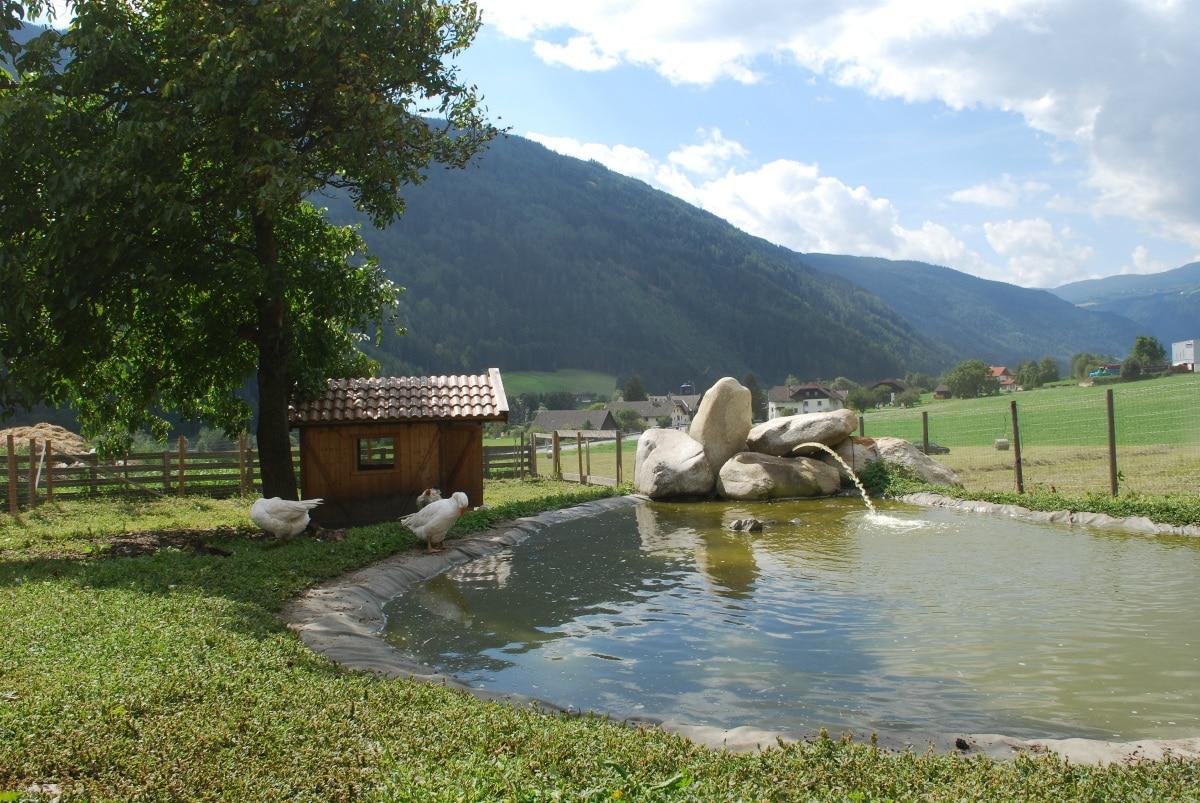 Agriturismo Alto Adige bambini - Residence fattoria Obermoarhof, laghetto