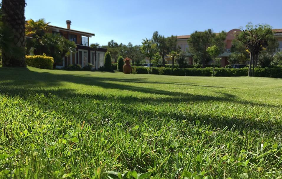 Villaggio a Numana per famiglie, Centro Vacanze De Angelis, verde