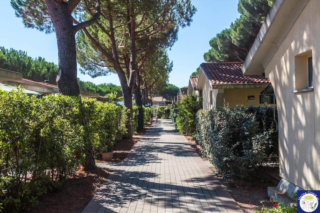 Villaggi Toscana mare per bambini: Camping Village Marina Chiara, viali