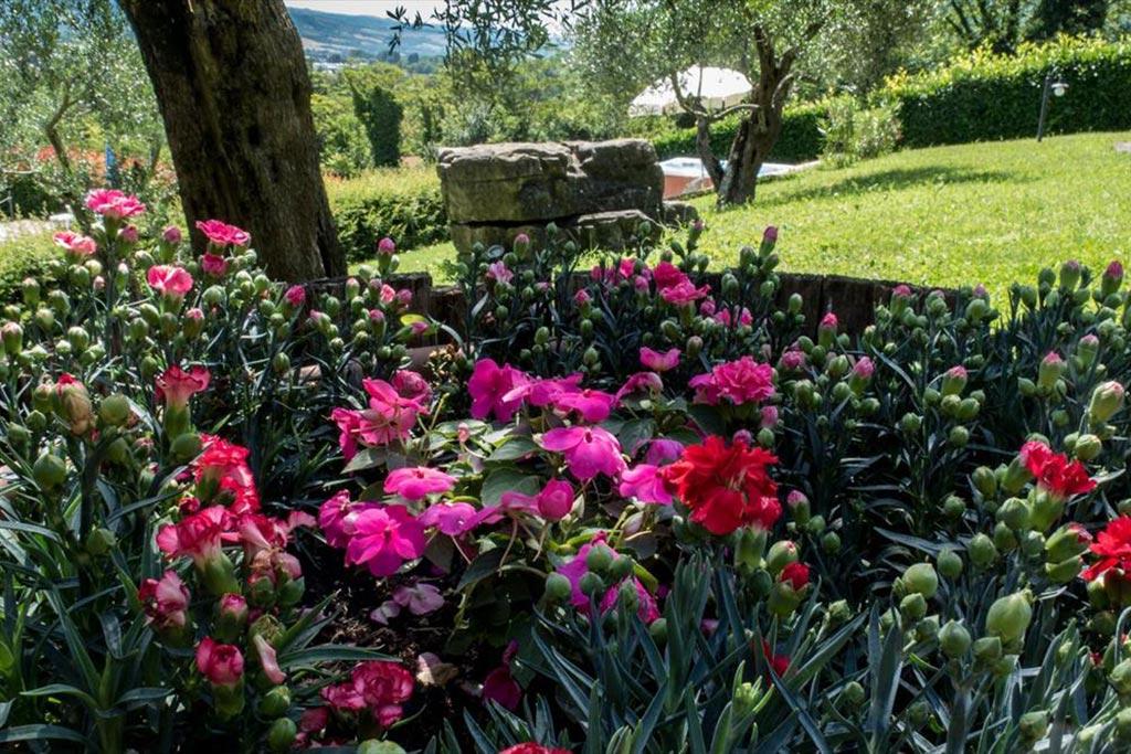 Agriturismo per famiglie in umbria casale degli olmi - Sistemazione giardino ...