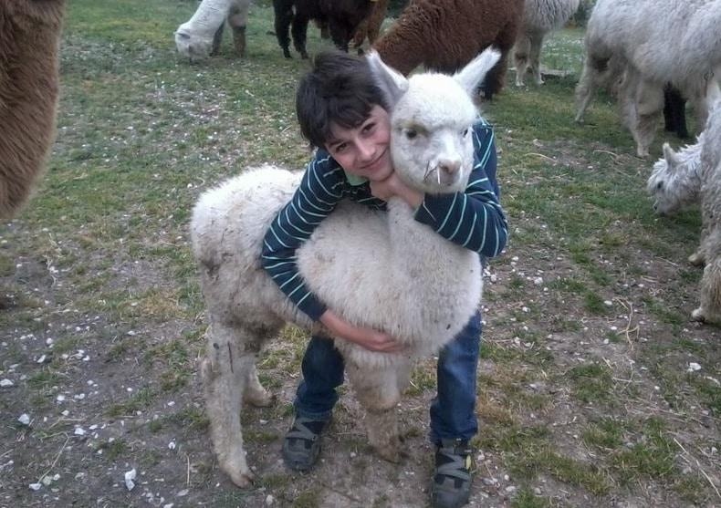 Agriturismo per famiglie in Umbria Casale degli Olmi animali della fattoria