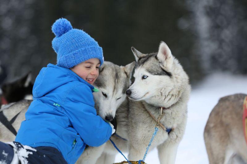 Sleddog in Trentino per bambini