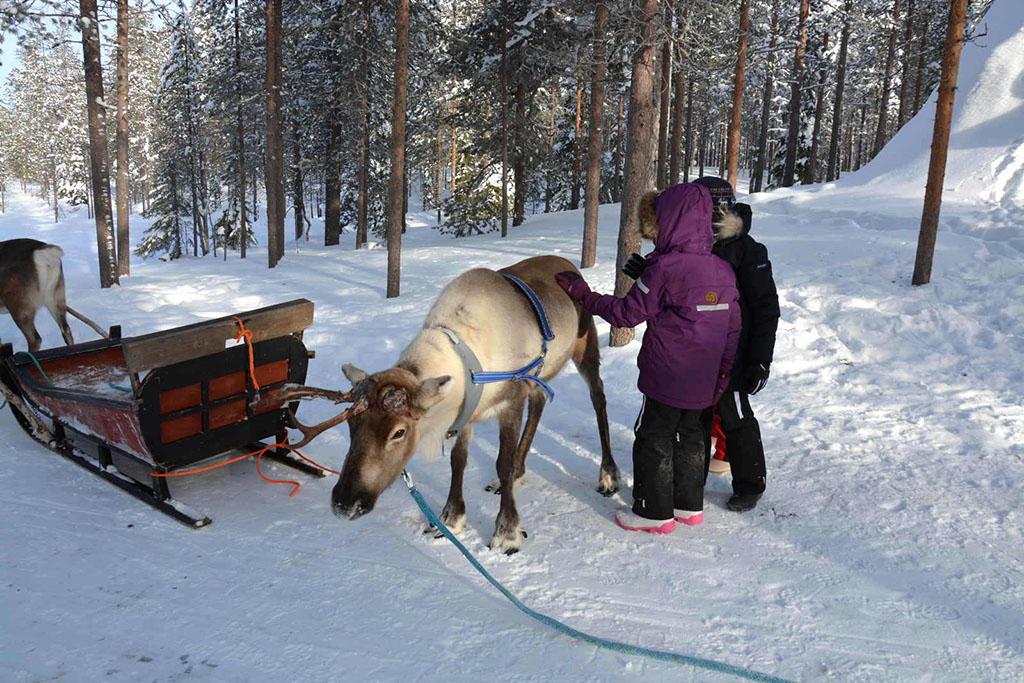 Viaggio in Lapponia con i Bambini, Salla, Finlandia