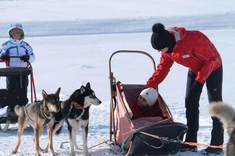 alpe cimbra bambini inverno sleddog