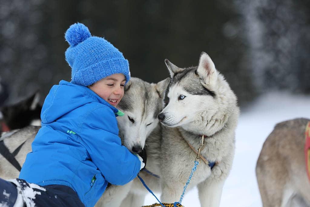 trentino-alpe-cimbra-inverno-sleddog2