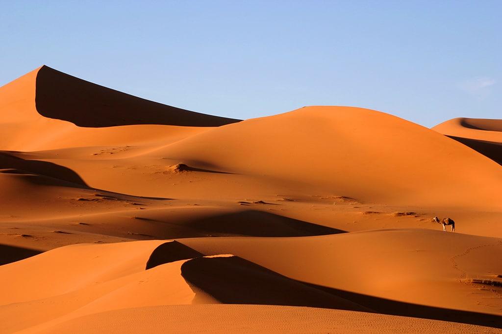 Marocco con bambini, dune merzouga