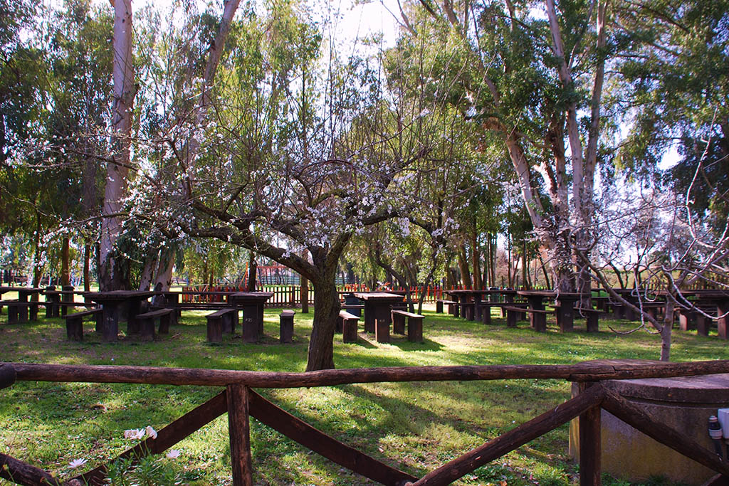 Parco Museo Piana delle Orme a Latina, area pic nic