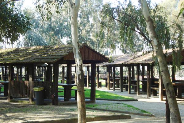 Parco Museo Piana delle Orme a Latina, aree verdi