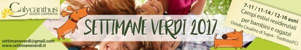 banner internet-settimane-verdi