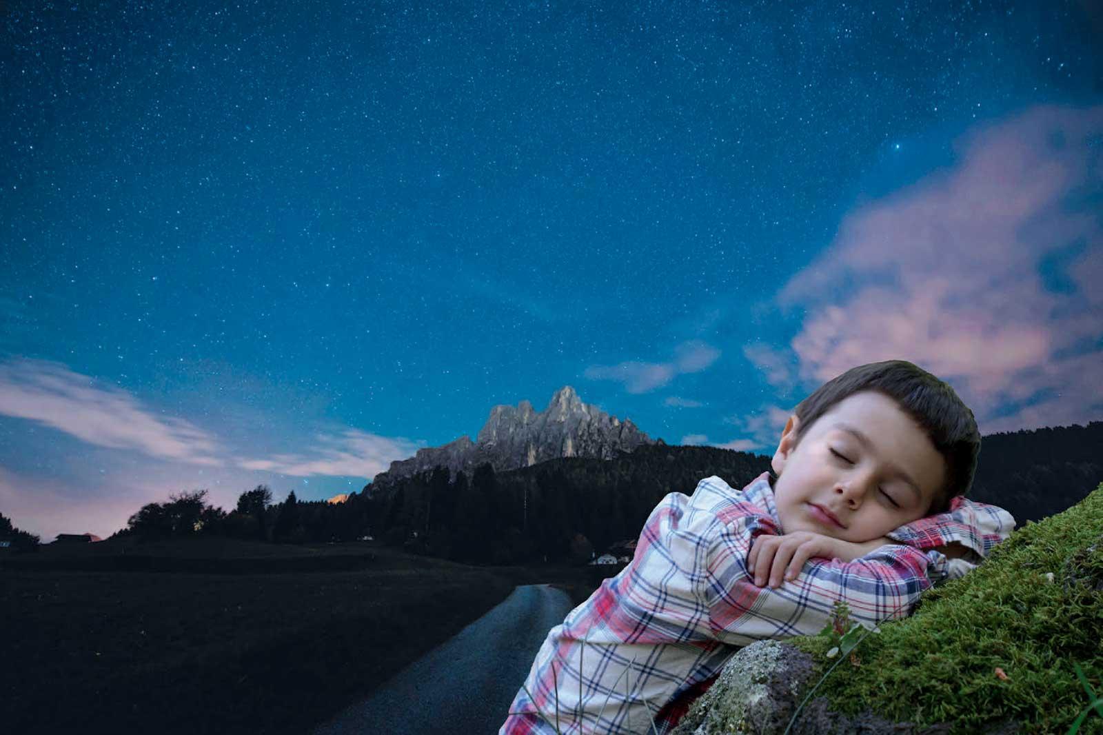 trentino-notte-parco-paneveggio-cover