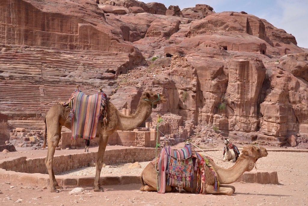 Il Teatro di Petra