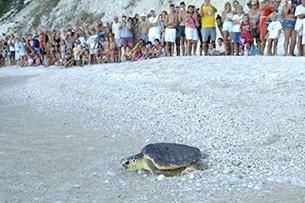 marche-spiagge-numana-tartaday-numana_001