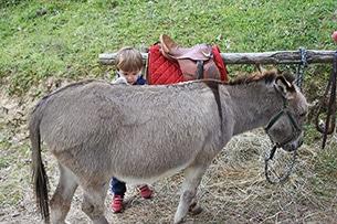 Trekking con gli asini per bambini