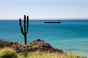 Baja California vacanza per famiglie