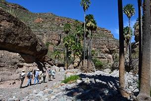 Baja California trekking nella sierra