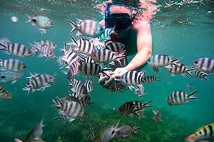 Mauritius con bambini, snorkeling