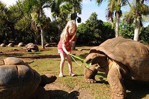 Mauritius con bambini, tartarughe centenarie