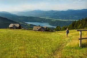 Carinzia sentieri tematici con bambini e passeggini Millstaetter Alpe