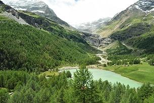 svizzera-treno-bernina-lago