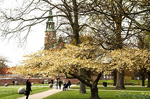 danimarca-copenhagen-Rosenborg-castello
