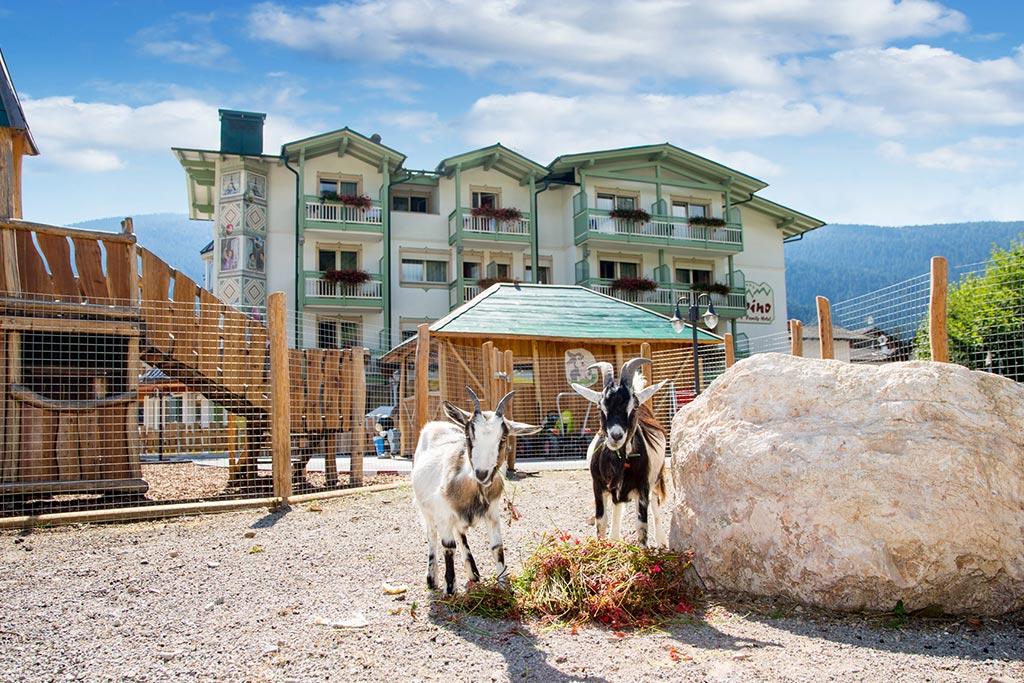Family hotel Andalo, Hotel Alpino, caprette