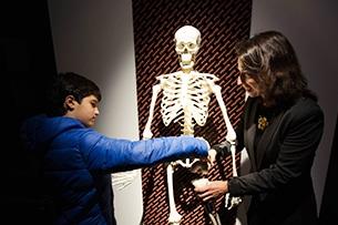 MUSME con bambini, il Museo della Storia della Medicina a Padova